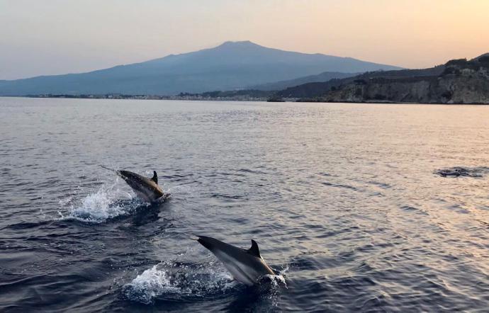 1531231974474.jpg--show_di_delfini_con_vista_sull_etna_incanto_per_taormina_e_i_suoi_turisti